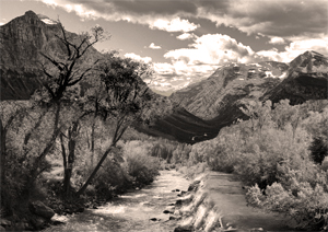 "Award-Print Realism, Murth Murthy, ""In the Valley"""