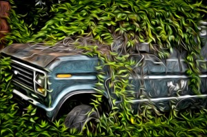 "Award-Digital Special Effects, Cary Wolfson, ""Painted Vine Van"""