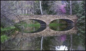 "Award-Print-Varsity Bridge, Jim Downs, ""Spring at Varsity Bridge"""