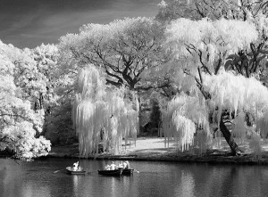 "Second Place-Print B&W, Gail Dohrmann, ""Central Park Boaters"""